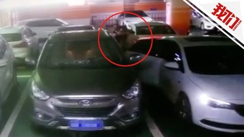 惊魂40秒!河南南阳一女子在车库遭蒙面男强行拖拽上车