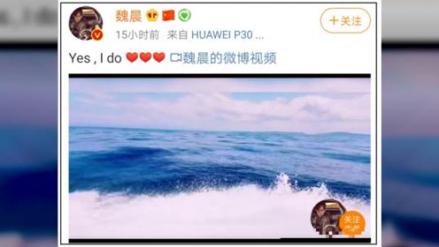 魏晨求婚女友成功:那些爱情长跑的人,都过得怎么样了