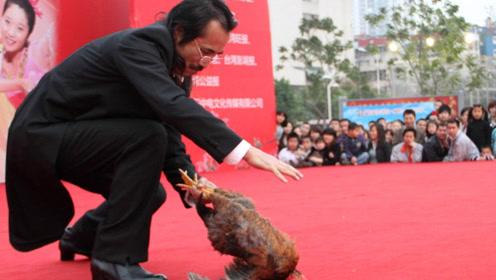鸡也会被催眠?男子在鸡面前画了一条直线。神奇的一幕发生了!