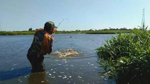 这钓鱼位置选得好,抛竿一会就中大鱼,而且个头还不小