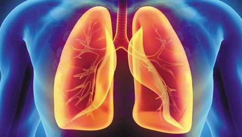 首次发现!肥胖人群肺部堆积脂肪组织,更易患哮喘