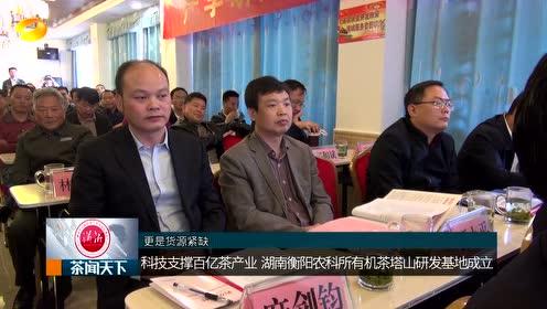 衡阳首个高山有机茶研发基地落地塔山!科技支撑百亿茶产业!