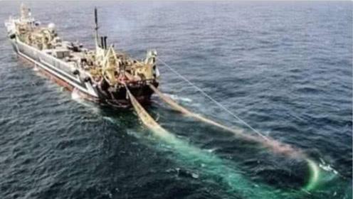 世界上最牛的捕鱼船,渔网竟然拉不动了,下水后看见凶手!