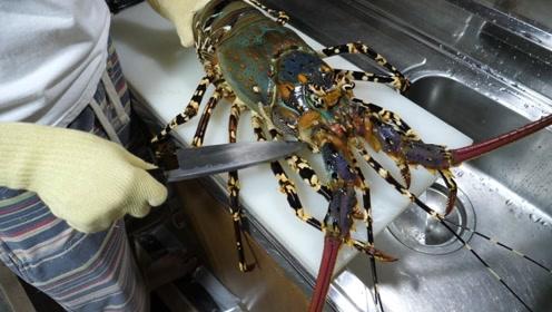 """日本大厨现场处理""""彩虹龙虾"""",刀工干净利落,吃起来太羡慕了"""