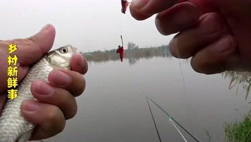野钓鲫鱼,钓到一条嘴上还挂着鱼钩的鲫鱼,几率有多大,你钓到过吗?