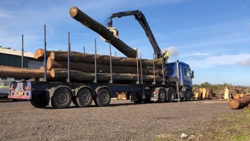 卡车运输大原木,自带装卸大抓钩,1个卡车技术员就能搞定!