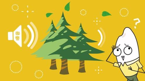 树木可以消除噪音,这是真的吗?