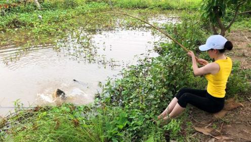 农村女孩野外钓鱼,小水沟里全是野生鱼,接二连三上钩太爽了