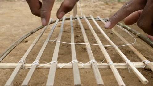 抓白鹭有那么难吗?农村小伙教你用竹枝制作陷阱,上钩率百分百