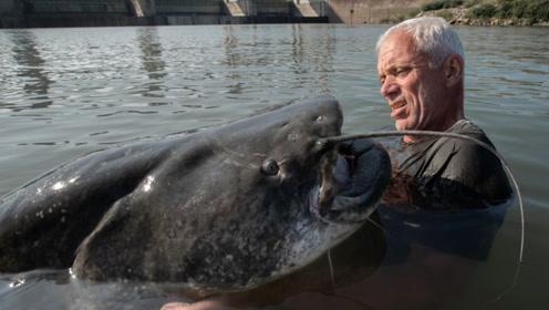 大叔意外钓到一条巨大的鲶鱼,体重竟重达300多斤,嘴巴比人脸还大!