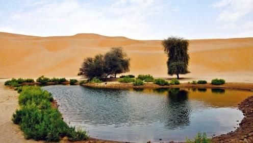 我国的沙漠出现奇迹,寸草不生的地方挖出大水库,外国人坐不住了