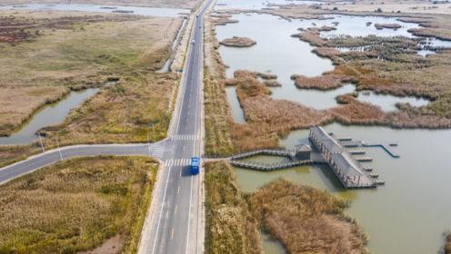 无人机航拍东营黄河入海口湿地公园,广袤无垠的芦苇湿地颇为壮观