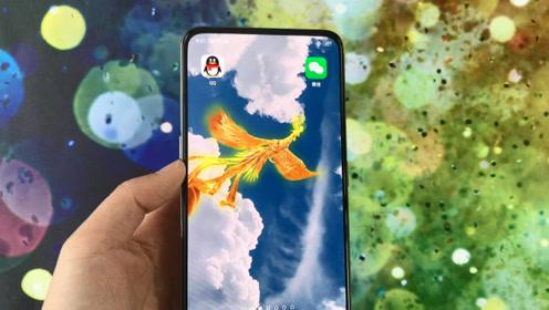 教你在微信里设置一只凤凰,有人一碰你手机就飞出来,太漂亮了!