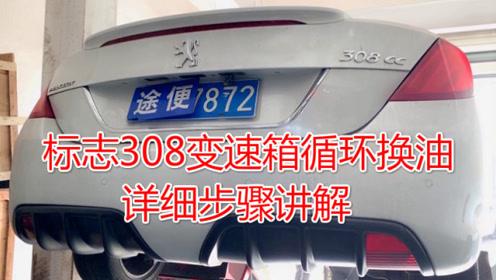 关于标志308循环机换油,这些内幕你知道多少。