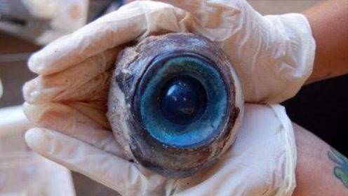 美国海滩惊现巨大蓝色眼球,疑为不明生物所有,专家:非地球生物!