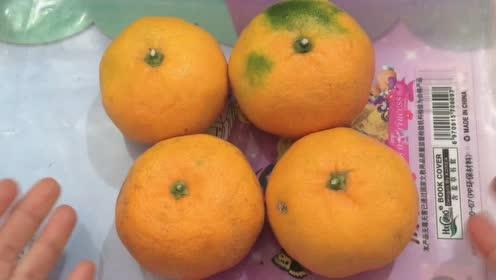买橘子挑黄的不一定好吃,掌握这几点,就能挑选到很甜的