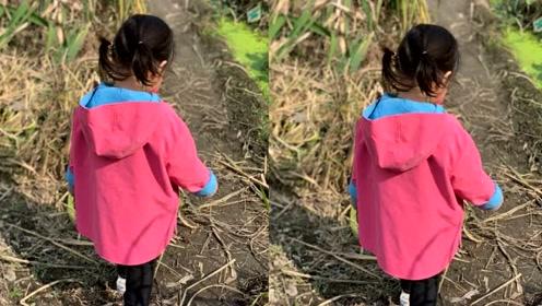 朱丹晒两岁女儿的背影照,小小丹扎俩马尾穿着粉红色外套超可爱