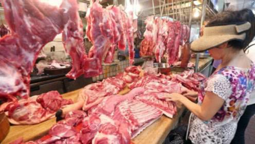 """生猪价格开始下跌,又传喜讯!巴西猪内脏获准入华,""""猪肉自由""""能实现吗?"""