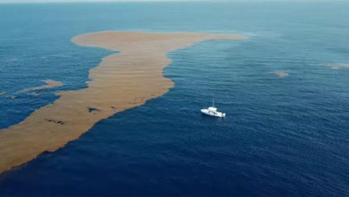 世界上最清澈的海,肉眼可看到海底72米深处,却让不少人有去无回