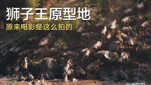 【此生必去】行摄动物大迁徙——《私游记》S3E2肯尼亚篇