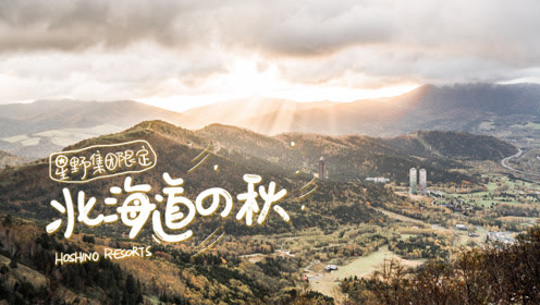 一座与白色恋爱的城市,却无法忽视它惊艳的秋!抓住北海道最后一抹秋!
