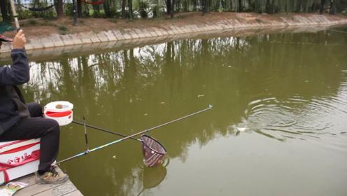 """如何才能钓好一场鱼?老钓手说了个""""大前提"""",很多钓友都忽视了"""