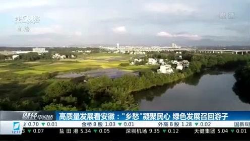 """高质量发展看安徽:""""乡愁""""凝聚民心 绿色发展召回游子"""