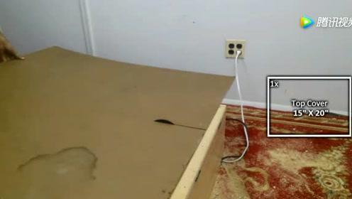 木板和砂轮制作的开料机,放在家里用处大,看一遍就能学会