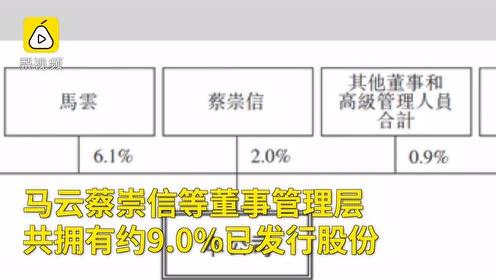 阿里巴巴启动香港IPO,提交上市申请,马云持股6.1%