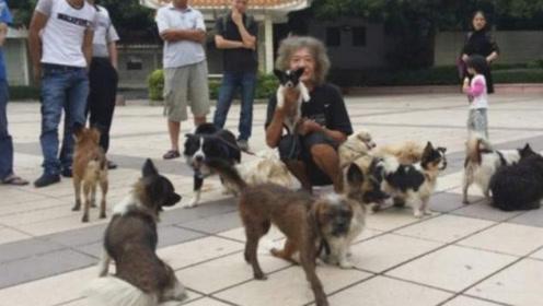 """从""""三哥""""到""""老伯"""",香港富二代的传奇人生,5千万如今只剩下狗"""