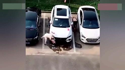 是不是每个提新车的人都这样,连续六天了,实在没忍住拍了下来!