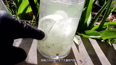 摔碎的热水瓶还有什么用途呢,牛人竟从中提取白银