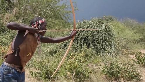 最古老的原始人部落,至今还是靠狩猎为生,拒绝和外界进行接触