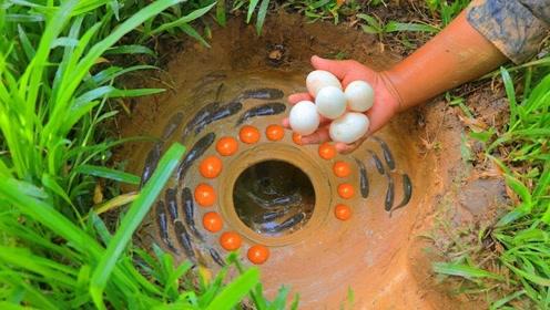 奇葩小伙河边挖出土坑,还打了几颗鸡蛋进去,回来一看直接傻眼!