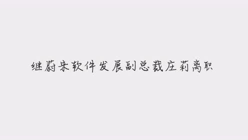 接棒谢东萤,蔚来宣布任命奉玮为公司首席财务官