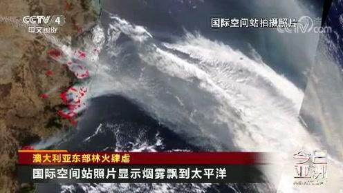 澳大利亚东部林火肆虐