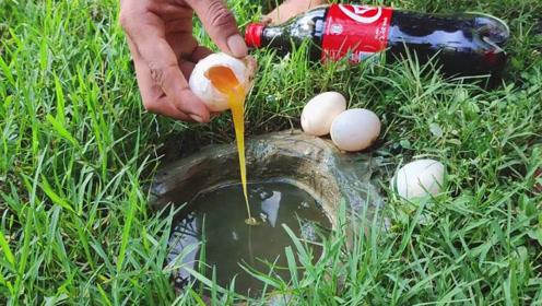 杂草边的洞穴,小伙倒点可乐,再打个鸡蛋下去,神奇一幕很快出现了