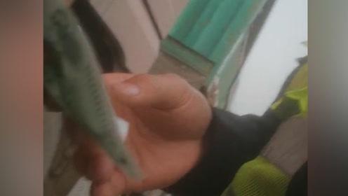 虞城公安通报交警收黑钱:对涉案辅警辞退拘留,交警大队长记过