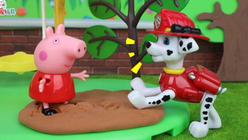 毛毛开展学霸研究计划,小猪佩奇为什么变成学霸了呢?玩具故事