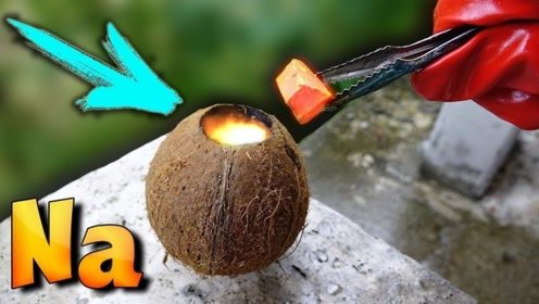 男子好奇把金属钠放在椰子中,下一秒画面可不得了