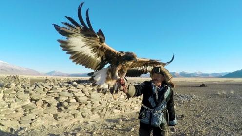 中国哈萨克族:世界上最后的金雕狩猎民族