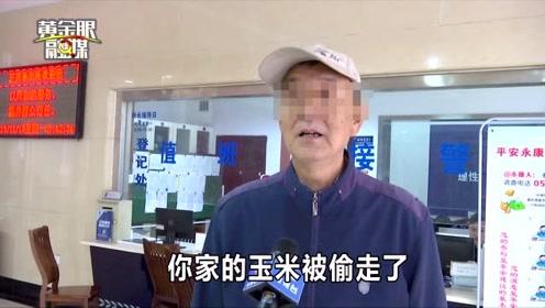 金华永康一村子三月被偷一百多次,这伙人卖了三千多元