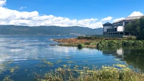 大理洱海好美好美,远离尘嚣的风好舒服,一路环海一路拍