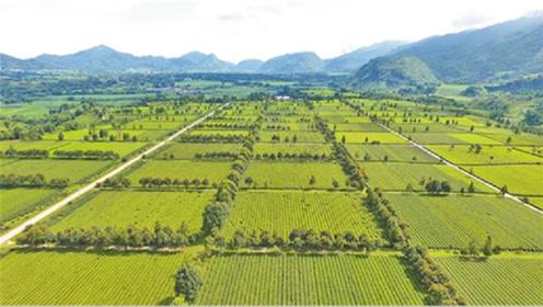 农民福音!国家斥资859亿修建10亿亩农田,将打破美国农业神话?