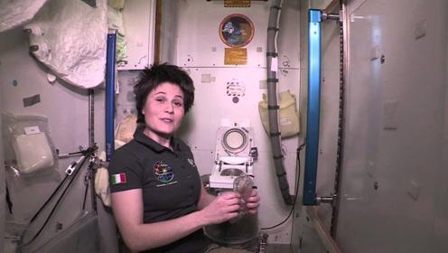 国际空间站厕所全部坏掉?宇航员将如何生存?上厕所方法让人脸红