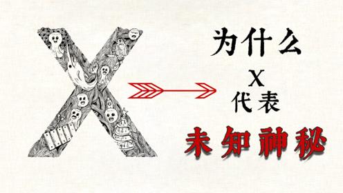 X为什么代表未知数?
