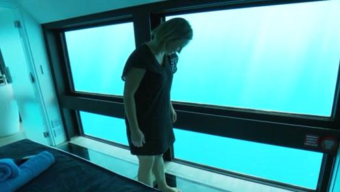 """澳大利亚首家海底酒店开业,游客变身""""海王""""与鱼共眠,网友:难以置信!"""