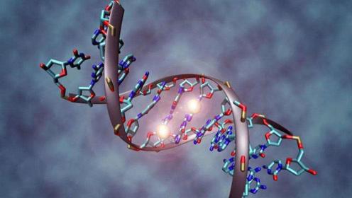 97%的DNA都是一种复杂的注释代码,真有外星文明动过手脚?