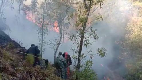 江西兴国突发森林火灾,大火蔓延两天天仍未扑灭 现场火光漫天