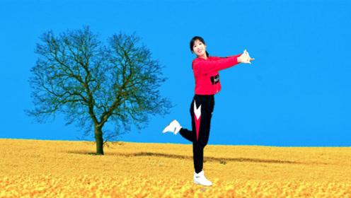 快来围观这只《爱情鸟DJ》太可爱活泼,健身舞好看还减肥